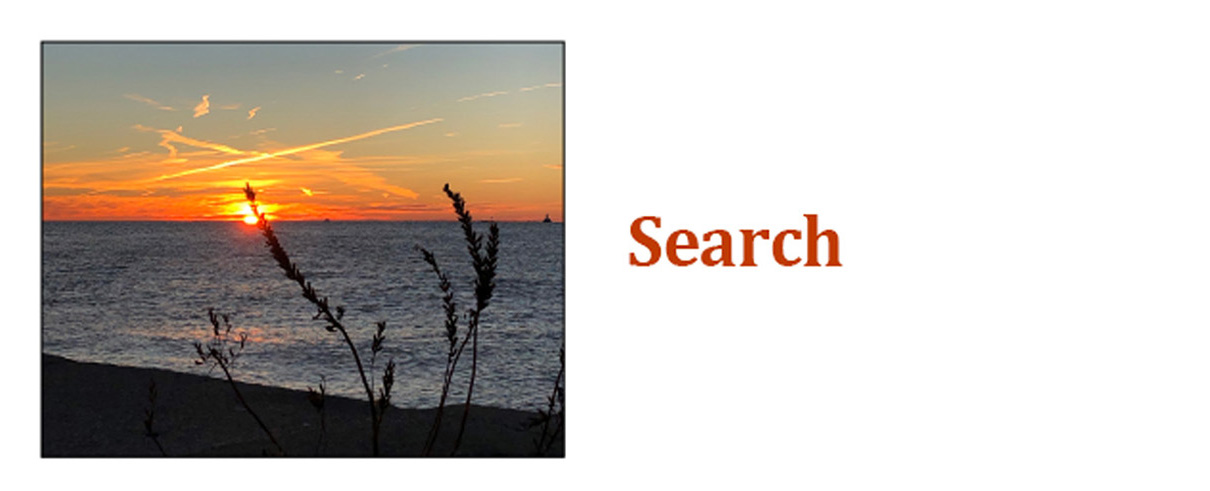 Chicago Writers Association Search